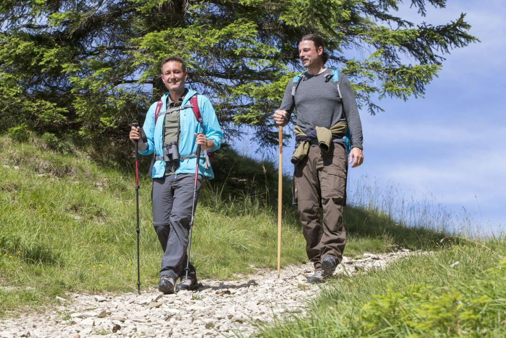 Wandern im Donaubergland