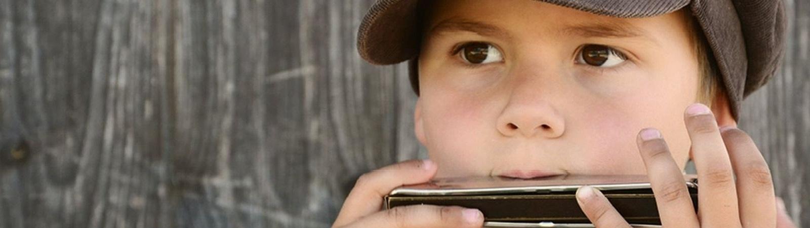 donauwellen-mundharmonika von hohner