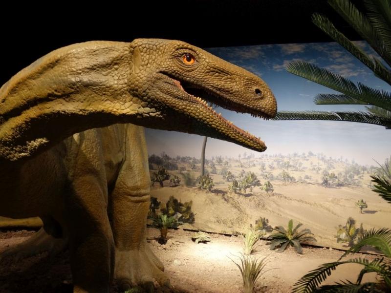 dinosaurier-museum-auberlehaus-trossingen
