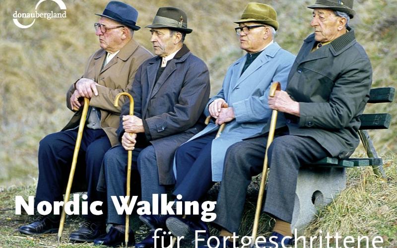 nordic-walking-fuer-fortgeschrittene-