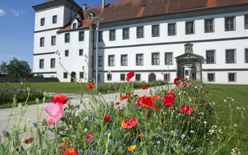 Schloss Meßkirch mit bunten Blumen am Wegrand