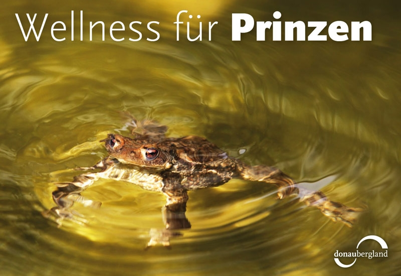 wellness-fuer-prinzen