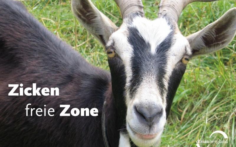 zickenfreie-zone